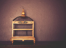 A Birdcage On Top Of A Piano ...