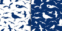 Seagull Silhouette Seamless Pattern Vector Background