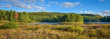 Sunny Summertime Marsh Wetlands Mixed With Boreal Forest Woodland Wilderness As Viewed From The Roadside Of An Ontario, Canada Highway.