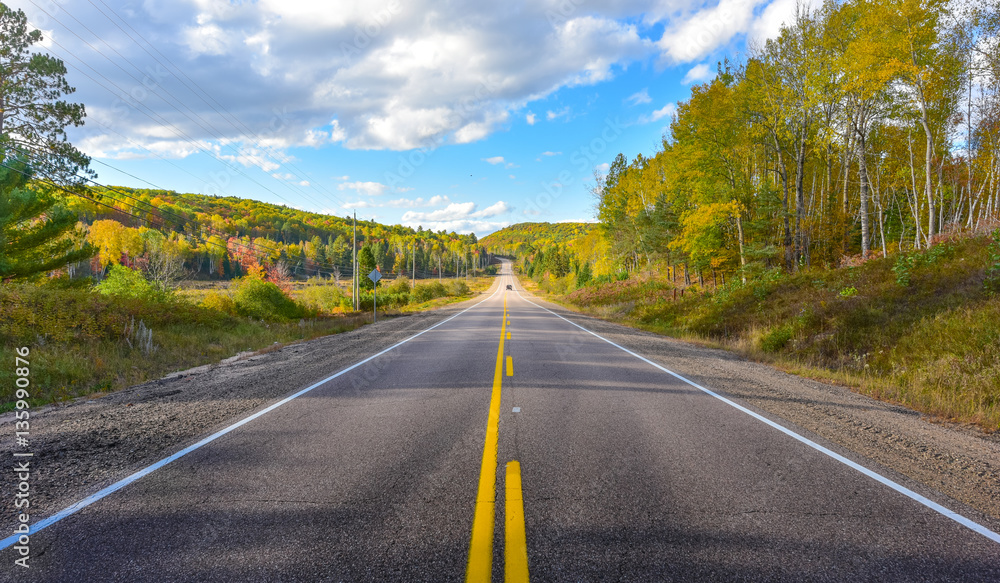 Fototapety, obrazy: Sunny road to anywhere, single point perspective down a country highway in summer.  Warm day to drive or travel to anywhere.