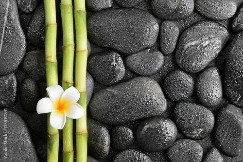 kwiat-frangipani-i-bambus-na-czarnych-kamieniach