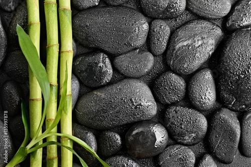motyw-kamieni-zielone-lodygi