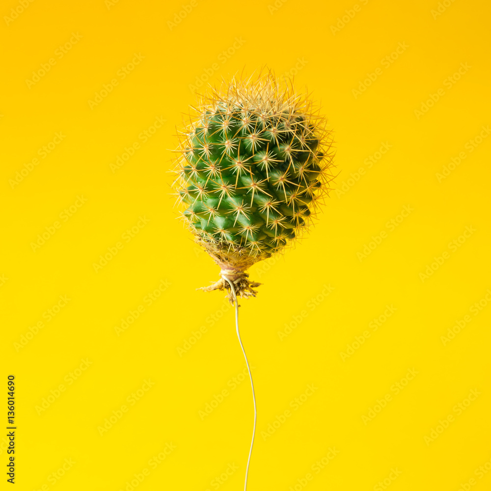 Fototapety, obrazy: Cactus balloon on bright yellow background. Creative minimal con
