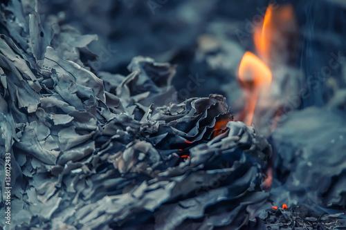 Fotografie, Obraz  Ashes and ember