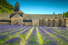 Abbey Of Senanque With Amazing Lavender Field, Gordes, Provence, France