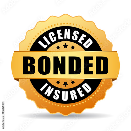 Licensed bonded insured vector icon Canvas Print