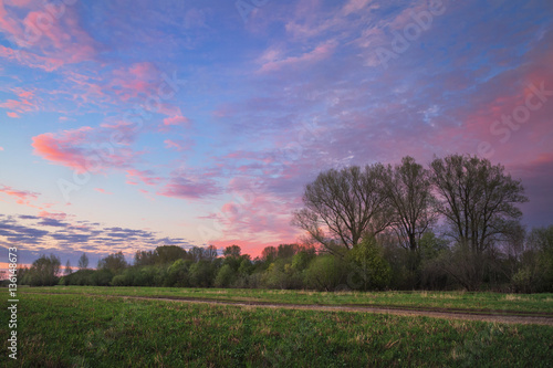 Wall Murals Beautiful morning spring sunset in the field
