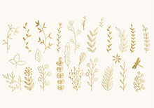 Set Of Golden Vector Floral De...