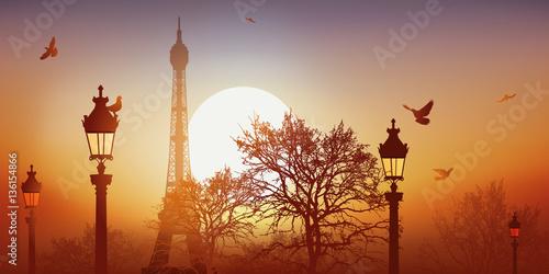 Tour Eiffel - Champ de Mars - Coucher de soleil - Pigeon