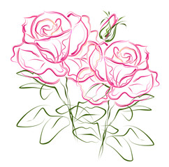 NaklejkaPink roses. Hand drawn stylized color vector brush sketch of pink rose flowers for greeting cards.