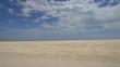endlos viele Muscheln, Herzmuscheln, Shell Beach, Muschelstrand, Shark Bay, Monkey Mia, Western Australia, Westaustralien, Australien, Down Under