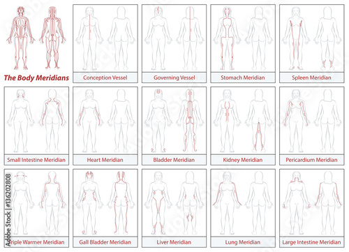 body meridians chart - female body - schematic diagram with main  acupuncture meridians and their directions