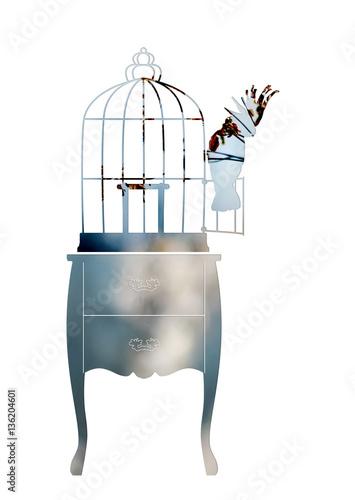 Fotografia  Double exposure. Birdcage and parrot