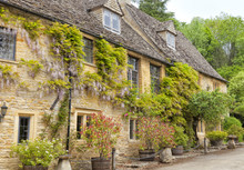 Charming Cotswolds Golden Cottages With Climbing Purple Wisteria, Plants In The Barrels, Ornamental Stone Mushrooms