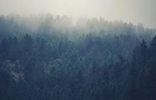 Colorado Foggy Hills