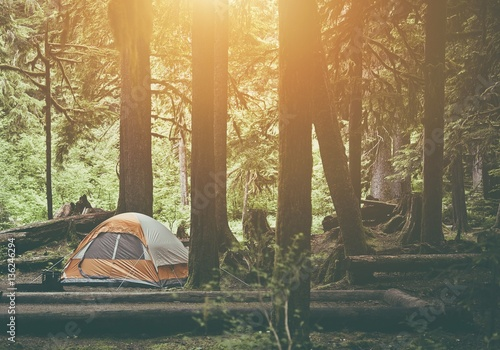 Poster Camping Tent Camping in the Forest