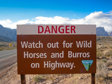 Sign Warning Of Wild Horses An...