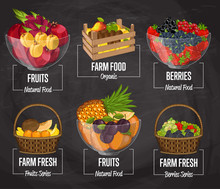 Organic Farm Fruit Set Vector Illustration. Natural Sweet Fruit, Organic Farming, Vegan Food Store, Retail Farm Product Label. Healthy Fruit Advertising With Apricot, Strawberry, Pineapple, Berry.