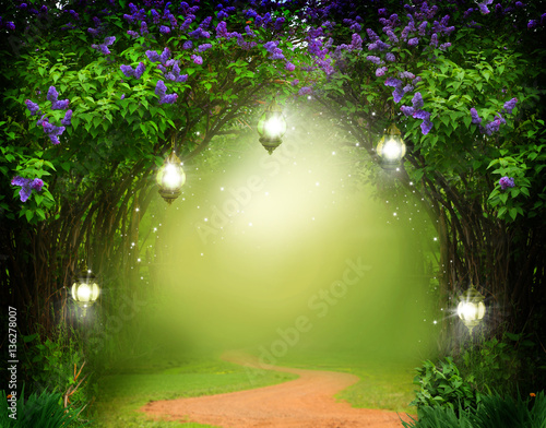 Fantasy background . Magic forest with road.