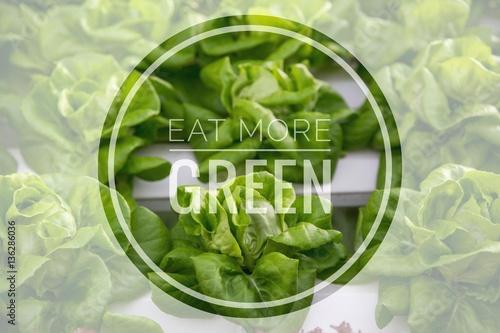jedz-wiecej-zieleniny