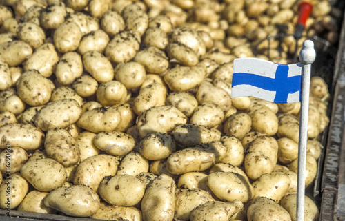 Fotografia  Potatoes, Finnish flag, Finland, Helsinki