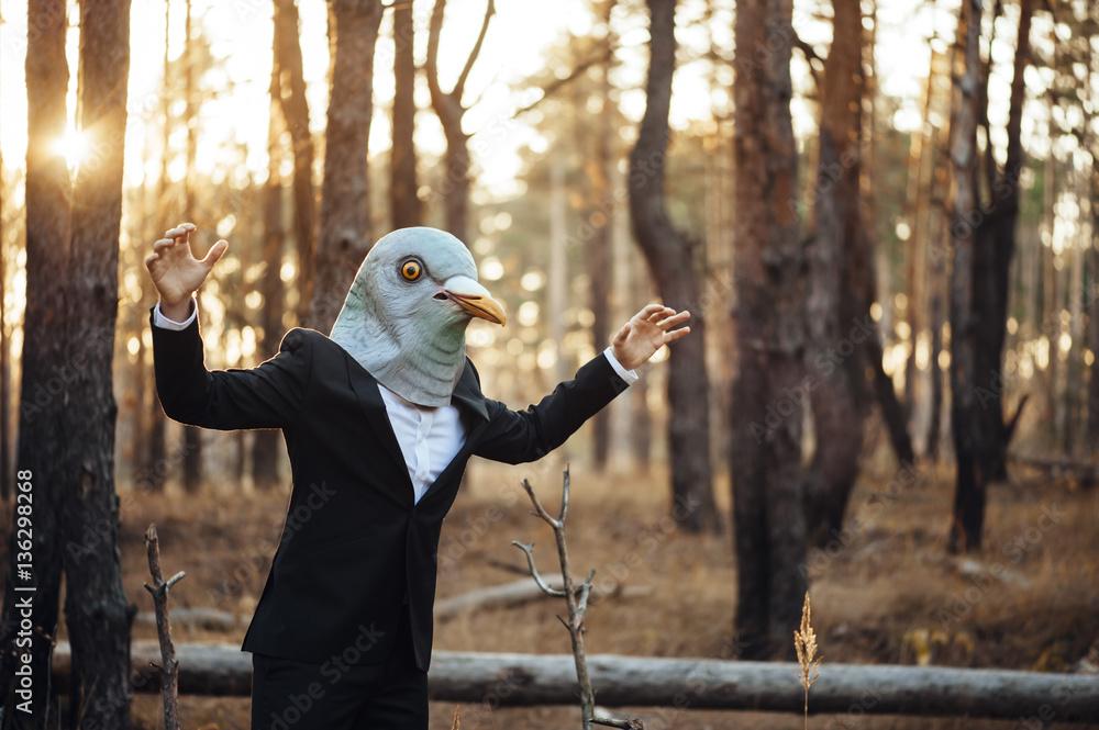 Fotografie, Obraz Weird businessman in a rubber bird mask pretending to fly in the sunset forest