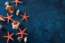 Red Starfish And Sea Sells Fra...