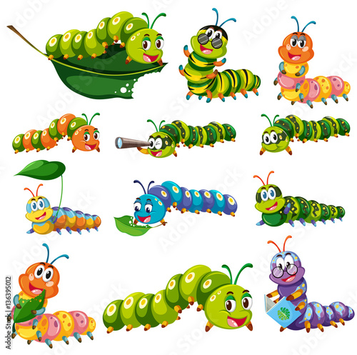 Fotomural Different color caterpillar characters