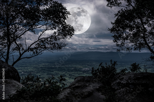 Foto op Aluminium Nachtblauw Silhouette the branches of trees with full moon on tranquil nature.