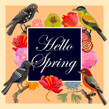 Hello Spring. Vintage Card Wit...