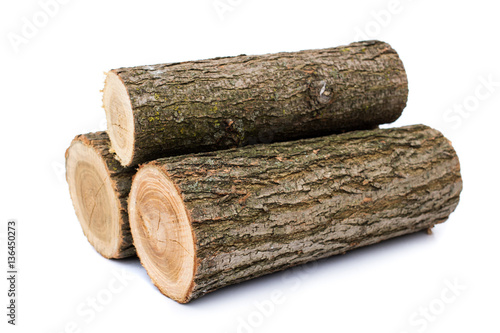 logs on white background, studio photo, acacias tree Canvas-taulu