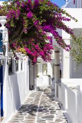 Kolorowe Mykonos