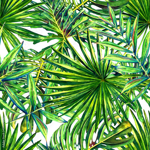 Ingelijste posters Tropische Bladeren Seamless floral pattern with watercolor tropical palm leaves. Jungle foliage on white background. Textile design.