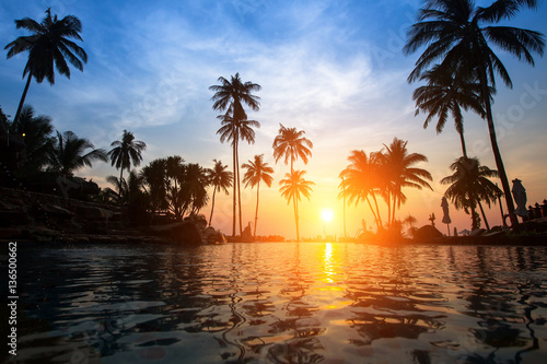 Bright sunset among palm trees on a tropical beach.