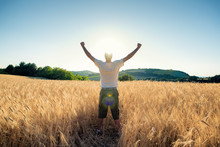 Golden Wheat Field In With Free Happy Man A Sunny Day