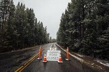 Road Closed Sign Amidst Trees ...