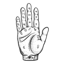Fortune Teller Hand With Palmi...