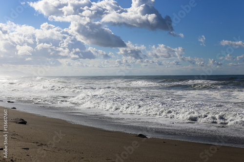 Tuinposter Canarische Eilanden Turquoise sea with martens flying and grey sky