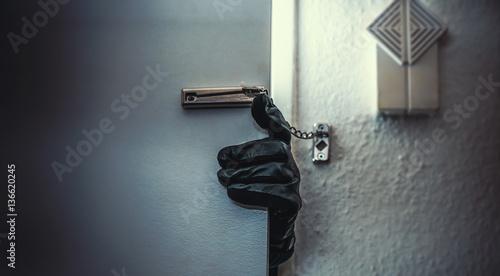 Cuadros en Lienzo  burglar open door of apartment or house