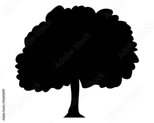 Photo  pittogramma albero