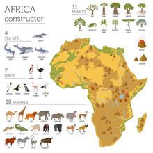 Flat Africa Flora And Fauna Ma...