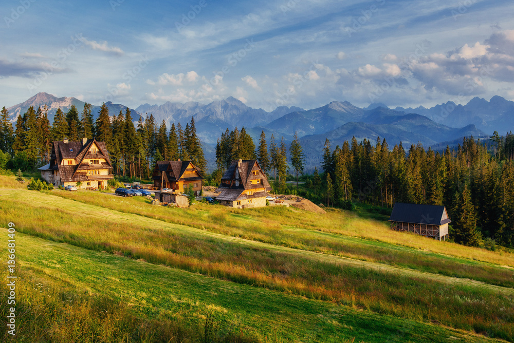 Traditional wooden house in the mountains on a green field Mount