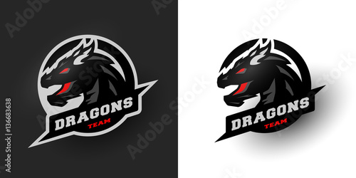 Fotografie, Tablou  Dragon Sport logo. Two options.