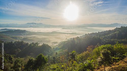 Fotografía  see fog in forest on hilltop inside the middle field of national park