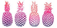 Set Of Pineapple Illustrations...