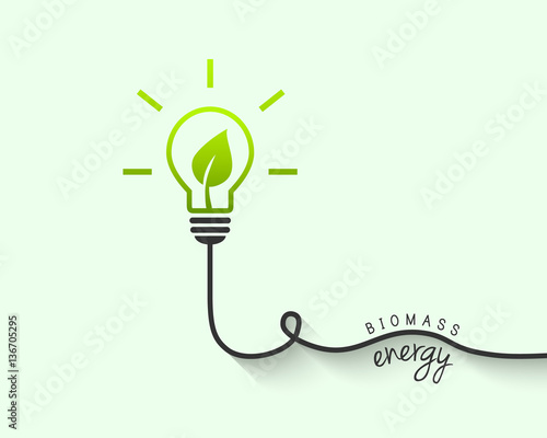 Photo Biomass and renewable energy source concept with light bulb and leaf inside