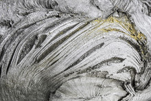 Texture Of Tree Bark Closeup. Gray Bark And Yellow Moss