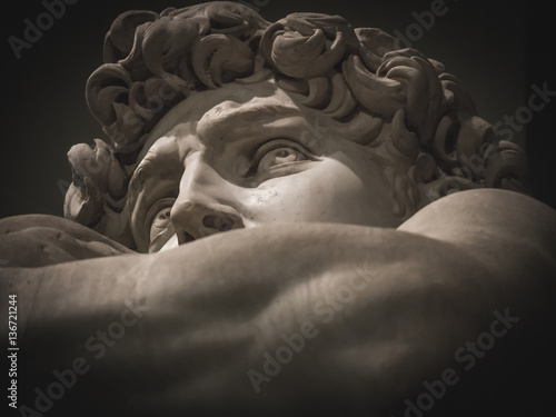 Canvas Prints Historic monument detail of the face of Michelangelo's David