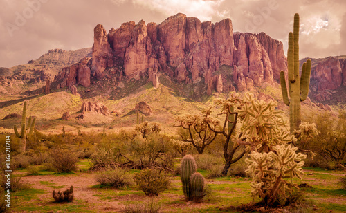 Fotobehang Droogte Arizona desert landscape, Superstition Mountains