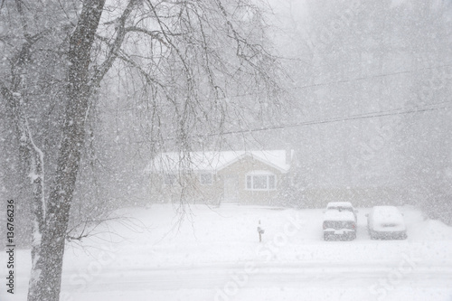 Canvas Print snowing and wind blowing in residential area in the blizzard
